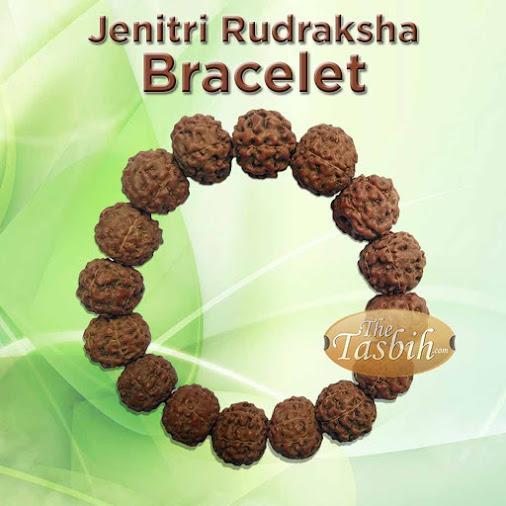 Large 14mm Jenitri Rudraksha Bracelet with Elastic Cord for Men or Women