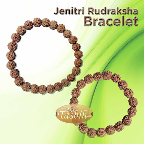 Natural Rudraksha Jenitri Bracelets on Elastic Cord for Men and Women