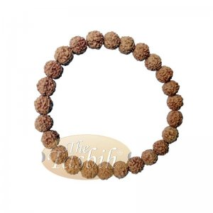 Bracelet Jenitri Rudraksha Seed 9mm With 25 Beads On Black Elastic Cord Unisex