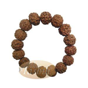 Rustic Bracelet Jenitri Rudraksha Seed 16mm With 16 Beads On Black Elastic Cord Unisex